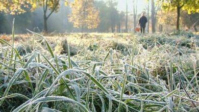 Photo of Холодные выходные ожидают казахстанцев